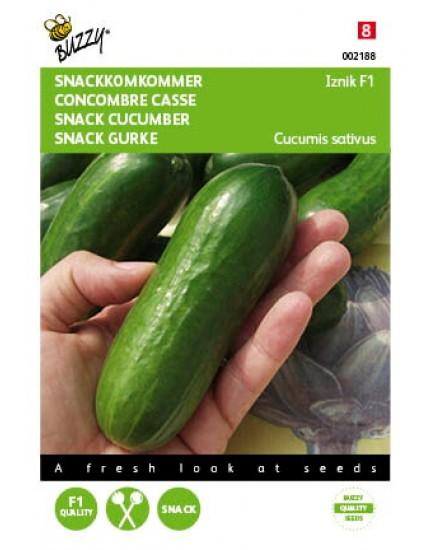 Komkommer Iznik F1