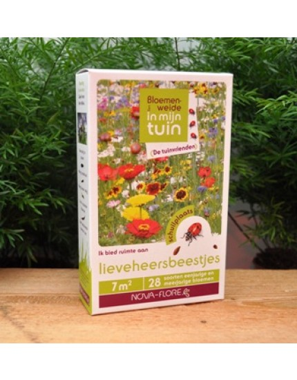 Bloemenmengsel Lieveheersbeestjes