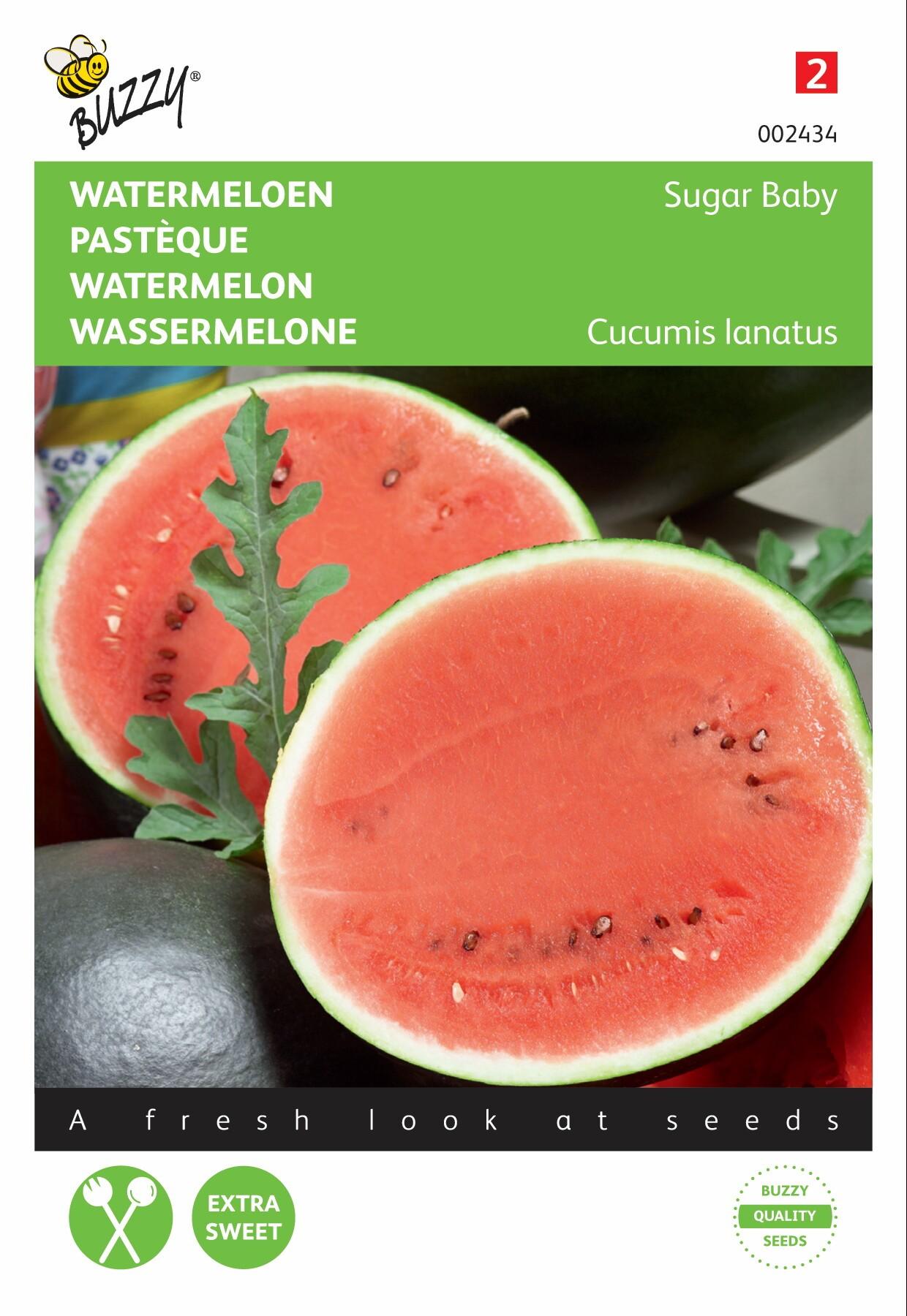 Watermeloen Suger Baby