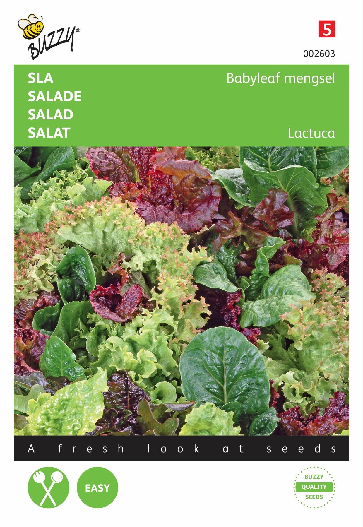 Salademengsel Baby Leaf Mixture