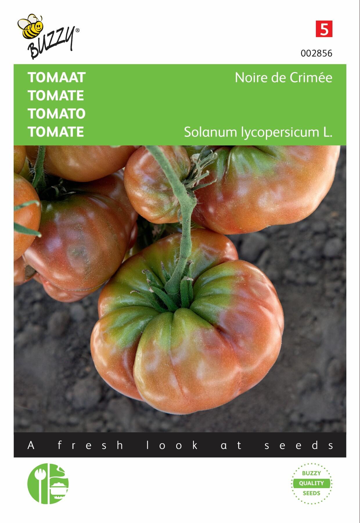 Tomaten Noire de Crimée
