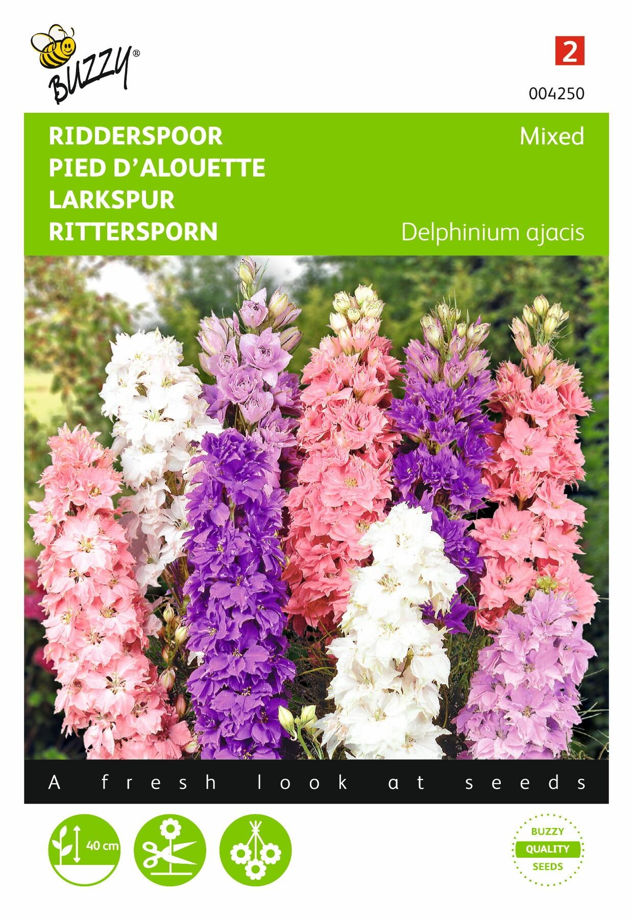 Delphinium  ajacis hyacinthbloemig