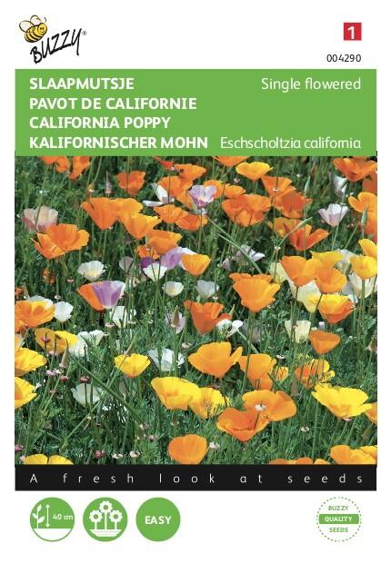 Eschscholtzia California Enkelbloemige Gemengd