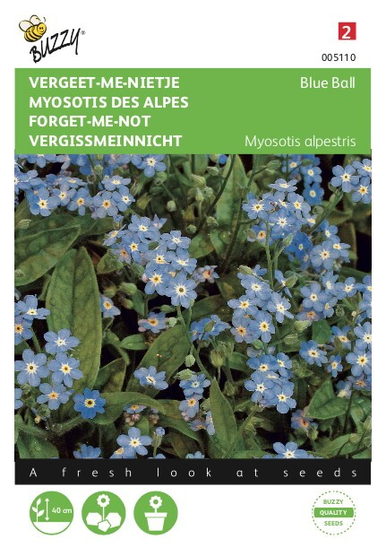 Myosotis alpenstris vroegbloeiend blauw