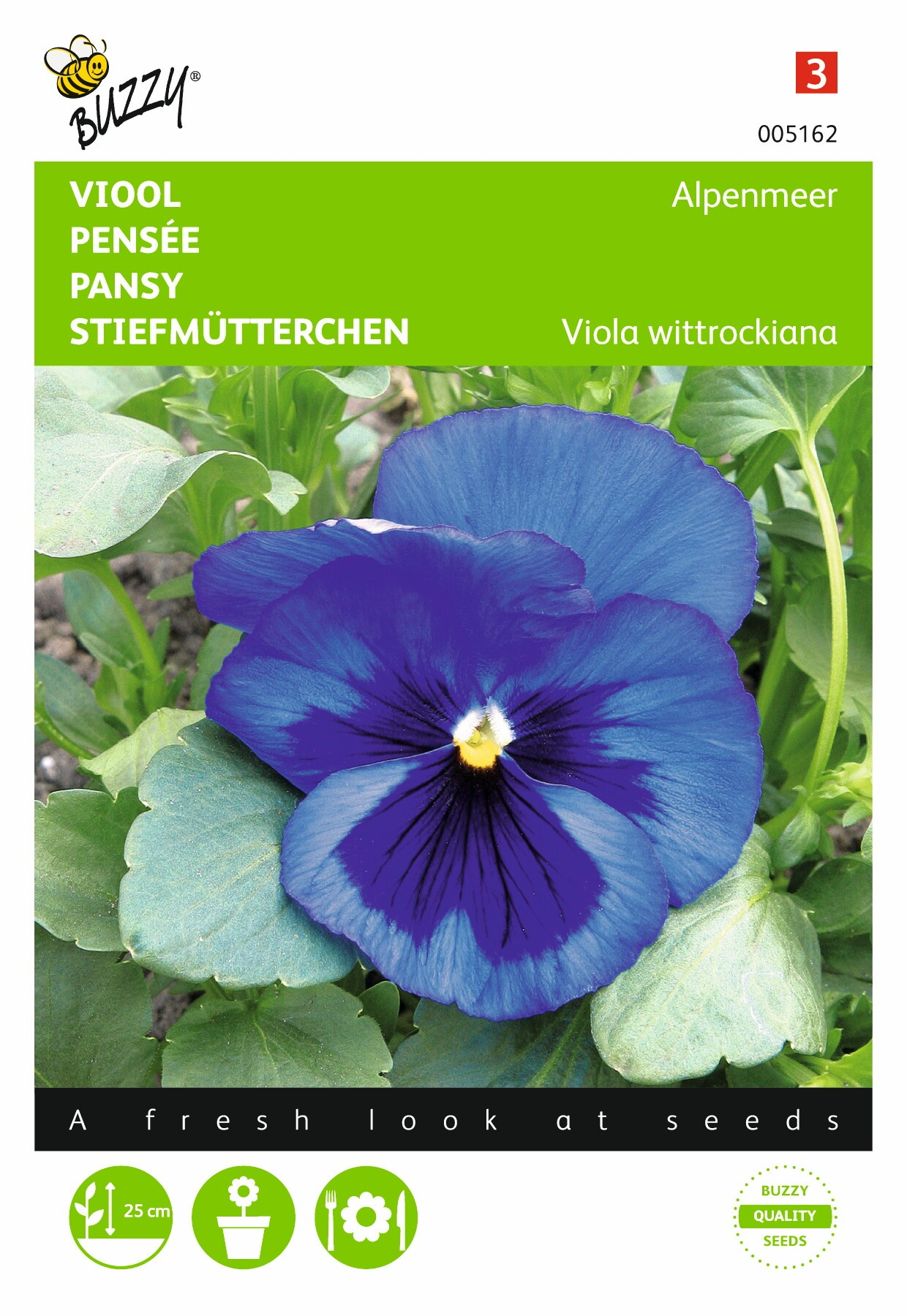 Viola wittrockiana Alpenmeer