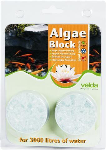Algae Block