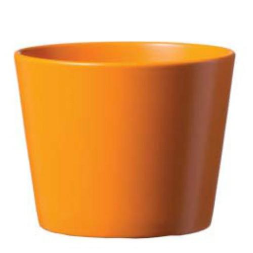 Dallas Esprit oranje mat