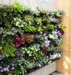 Minigarden verticale tuin