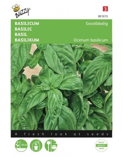 Basilicum Grootbladig