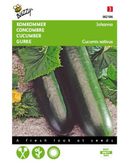 Komkommer Giganta/Johanna