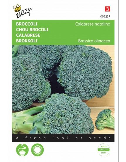 Broccoli Calabria