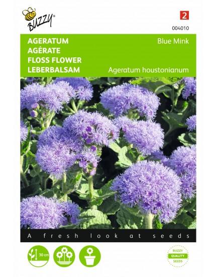Ageratum Mexicana Blue Mink