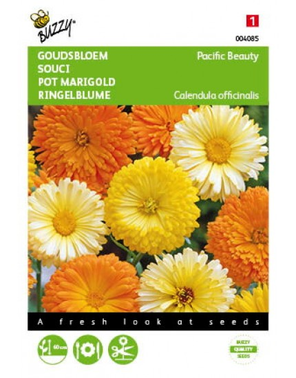 Calendula Officinalis Pacific Beauty