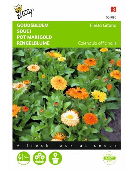 Calendula Officinalis Fiësta gitana
