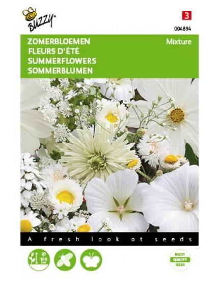 Zomerbloemen witte tinten