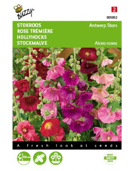Althaea rosea Antwerp Stars mix
