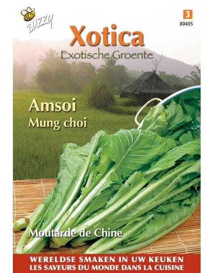 Amsoi Mung Choi