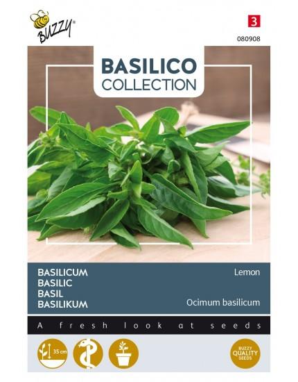 Basilicum 'Lemon'