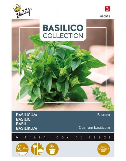 Basilicum 'Bascuro'