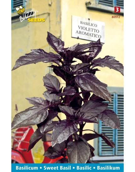 Basilicum Violetto Aromatico