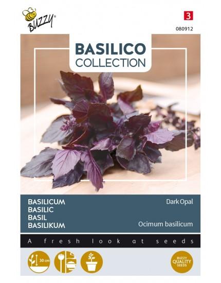 Basilicum 'Dark Opal'