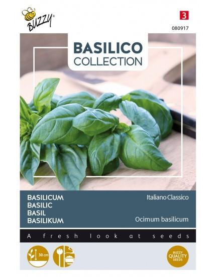 Basilicum 'Italiano Classico'