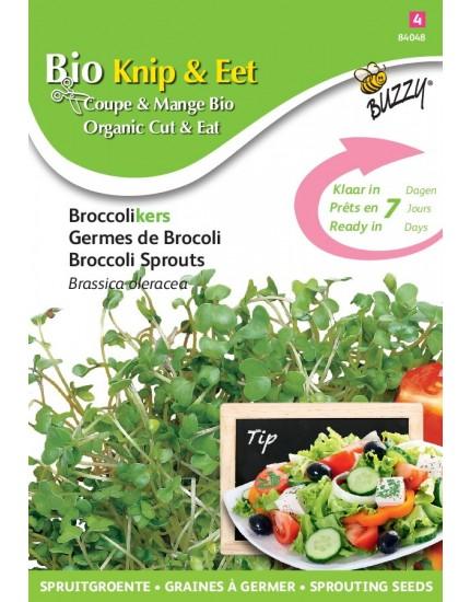 Broccoli Kers
