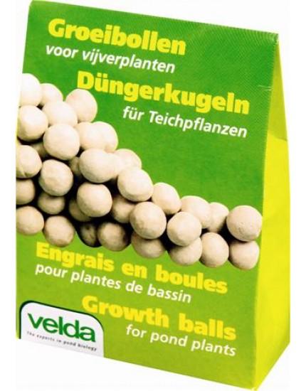 Groeibollen voor vijverplanten