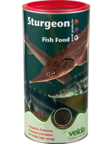 Sturgeon Fish Food