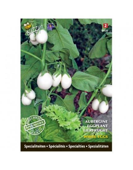 Aubergine White Eggs