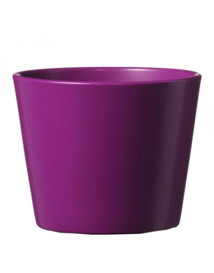 Dallas Esprit violet mat