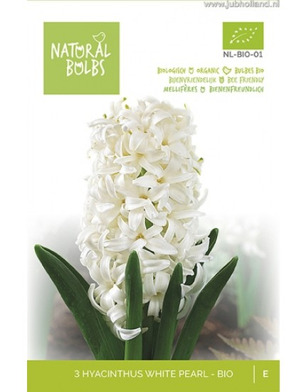 Hyacinthus 'White Pearl' biologisch
