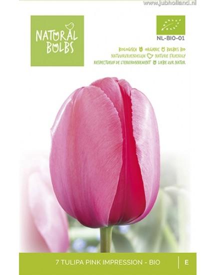 Tulipa 'Pink Impression' biologisch