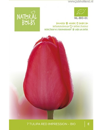 Tulipa 'Red Impression' biologische