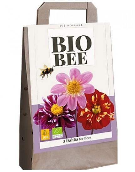 Tas Bee Dahlia - BIO