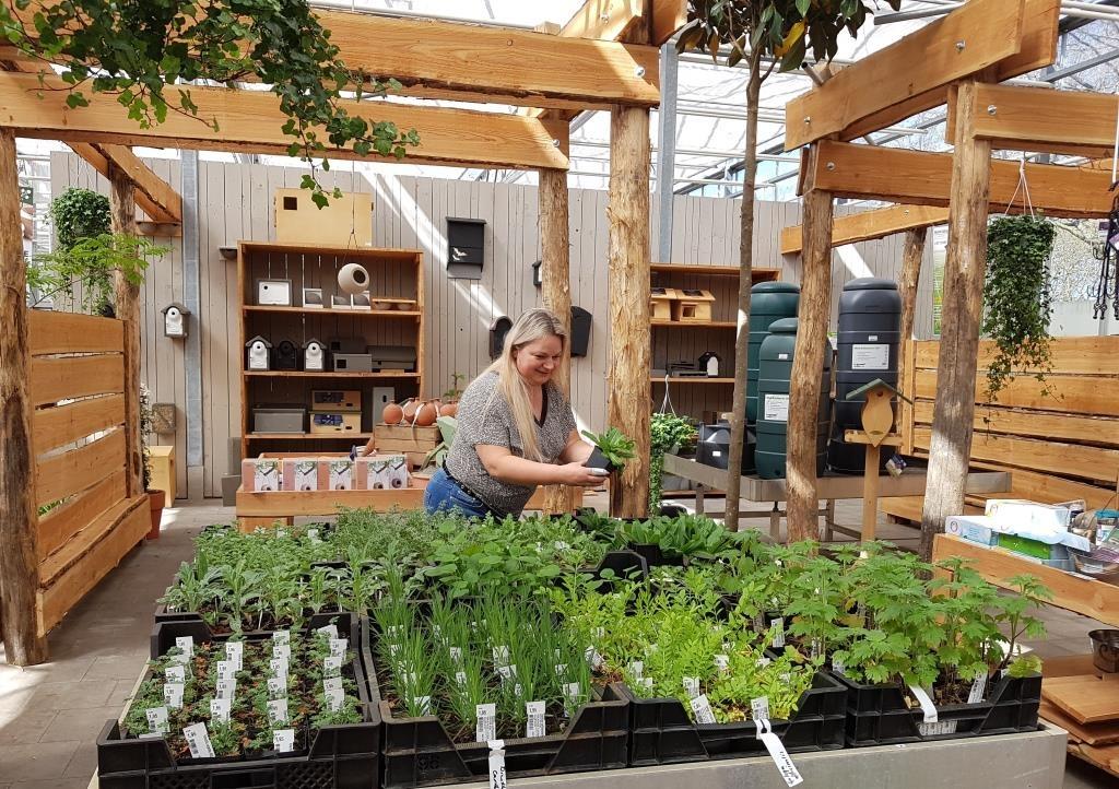 natuurplein_geopend_met_veel_biologische_planten